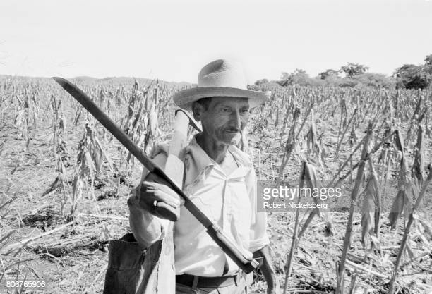 A day laborer farmer walks with his machete April 10 1983 after working in a corn field in San Vicente El Salvador Farm workers in El Salvador were...