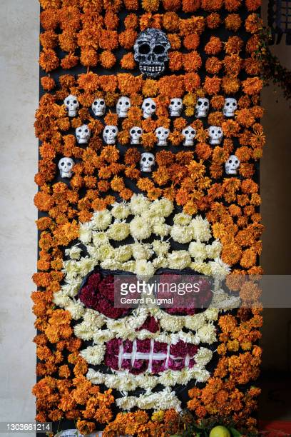 """day of the dead altar detail of the flowers. there is a drawing of a skull. picture taken on the 1st november 2019 in oaxaca, mexico - """"gerard puigmal"""" stock pictures, royalty-free photos & images"""