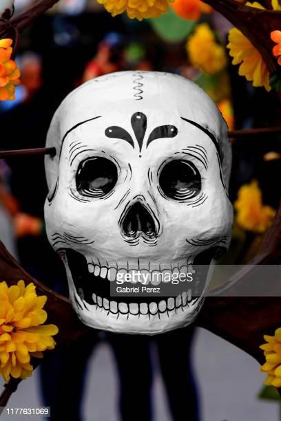 a day of the dead calavera in mexico city - mort concepts photos et images de collection