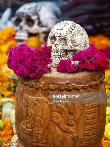 a day of the dead image in mexico city - allerheiligen stock-fotos und bilder