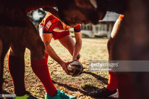 day on rugby field - rugby team stock pictures, royalty-free photos & images