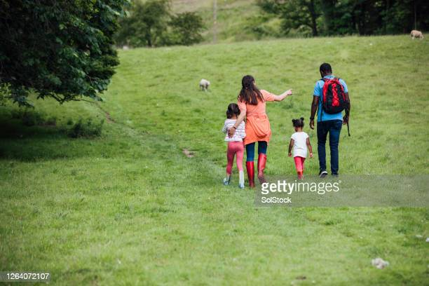 day out with family - rear view stock pictures, royalty-free photos & images