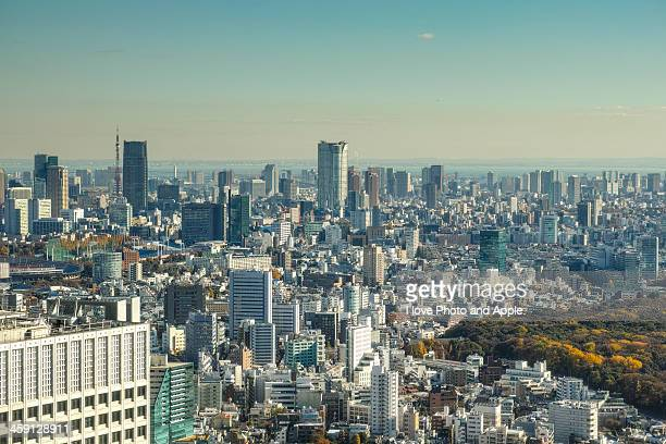 day to possess a vista of the distant far - roppongi hills stock pictures, royalty-free photos & images