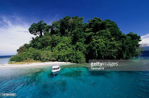 day trippers on tropical island - papua new guinea stock pictures, royalty-free photos & images