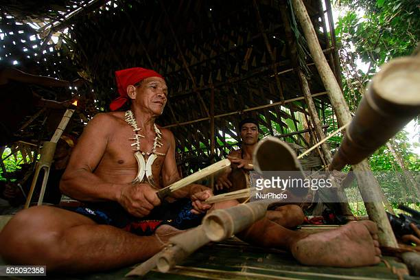 Dayak Deyah perform their daily activities in their village on January 20 2015 in south kalimantan Tabalong Indonesia Deyah kaharingan embrace...