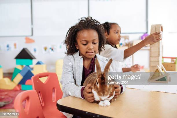 Daycare lesson about domestic animals