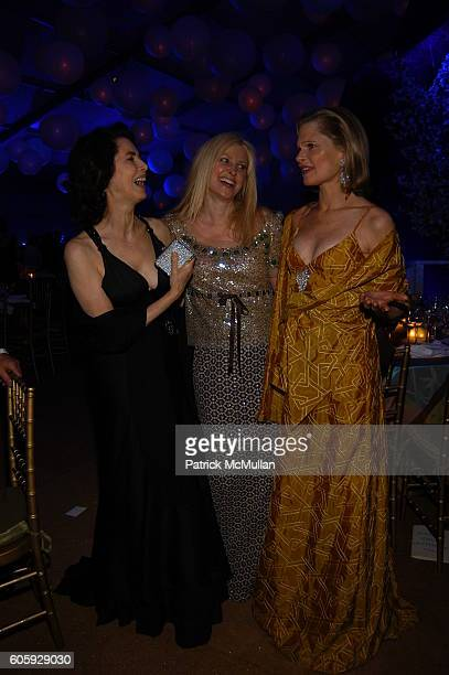 Dayle Haddon Cynthia Lufkin and Robin Bell attend The JUILLIARD Centennial Gala Live at Lincoln Center at The Juilliard School on April 3 2006 in New...