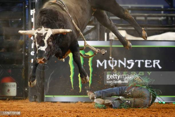 Daylon Swearingen gets bucked from bull I'm Busted during the PBR World Finals, on November 15th at the AT&T Stadium, Arlington, TX.