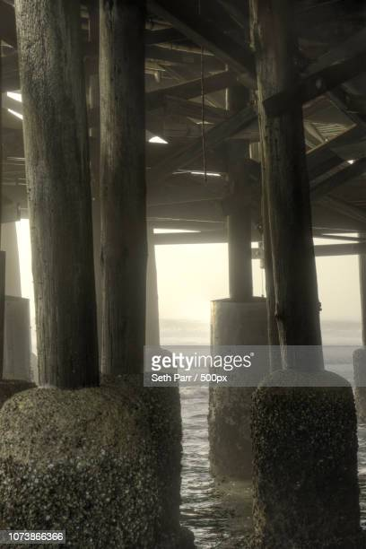 Daytona Beach Pier Pilings by Seth Benton Parr