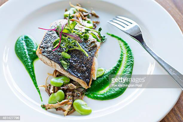 Panseared stone bass with parsley veloute at Thally Restaurant in Washington DC