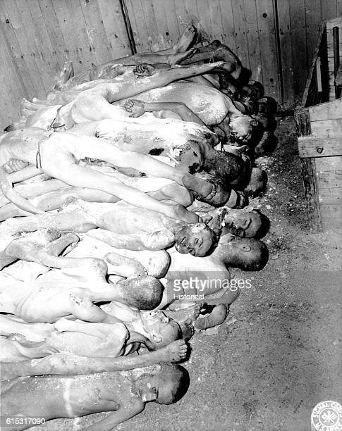 Dead bodies are stacked up at the Ohrdruf Concentration Camp in Germany on April 10 1945 | Location Ohrdruf Germany