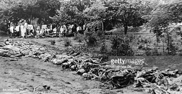 Dead bodies lined up at a mass grave near Vinnytsia Ukraine the victims were massacred by the State Political Directorate