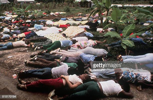 Dead bodies litter the ground after a mass suicide of the People's Temple cult followers led by Jim Jones the founder and leader of the cult Over 900...