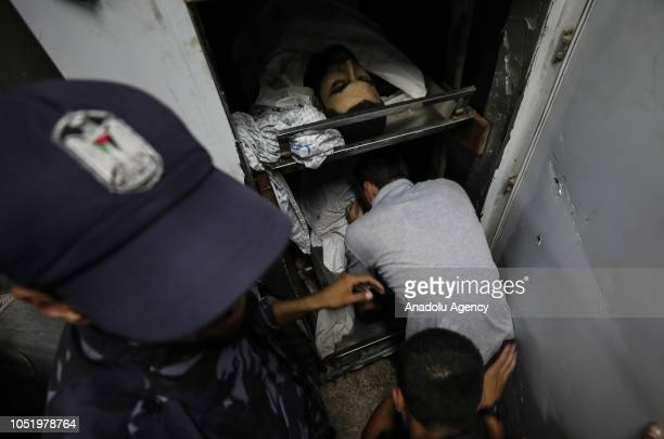 Dead bodies of Palestinian demonstrators Ahmed Ibrahim alTawil Mohamed Abdel Hafiz Ismael and Ahmed Abdullah Abu Naim who were killed by Israeli...