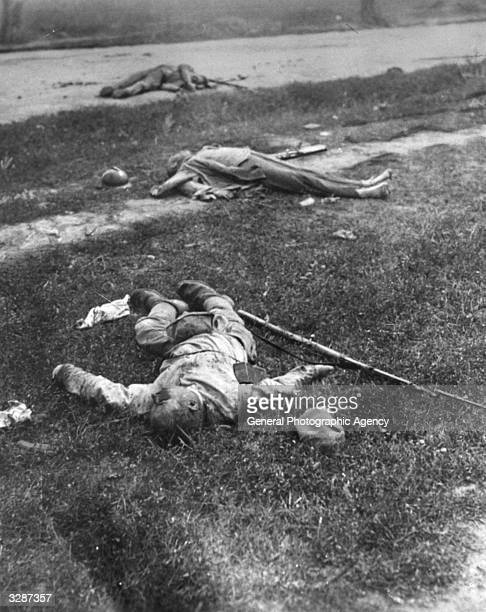 Dead bodies strewn along the side of a Romanian road Overwhelmed by the combined German Austrian and Bulgarian armies the Romanian army were...