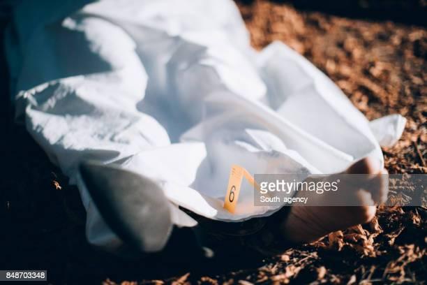 Tote Körper bedeckt