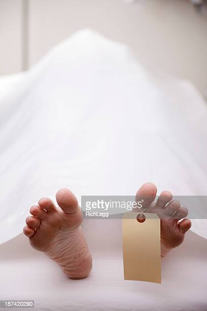 dead body in morgue - hospital morgue stock photos and pictures
