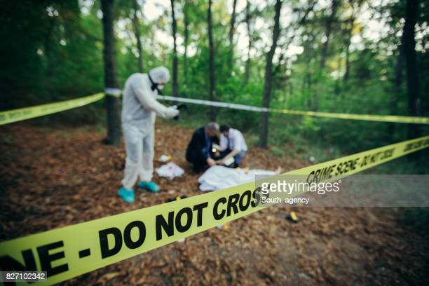 corpo morto na floresta - dead body - fotografias e filmes do acervo