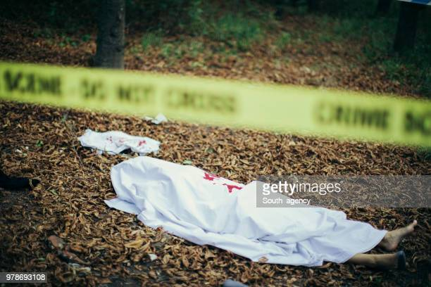 dead body in the forest - dead body stock pictures, royalty-free photos & images