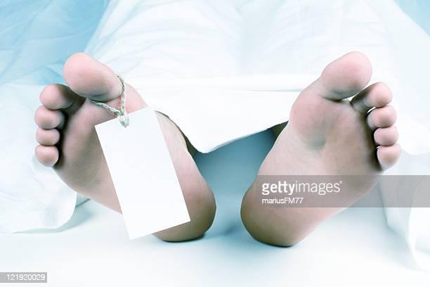 dead cuerpo - autopsia fotografías e imágenes de stock