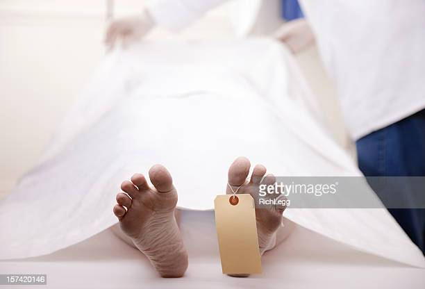 dead body - cadaver stock photos and pictures