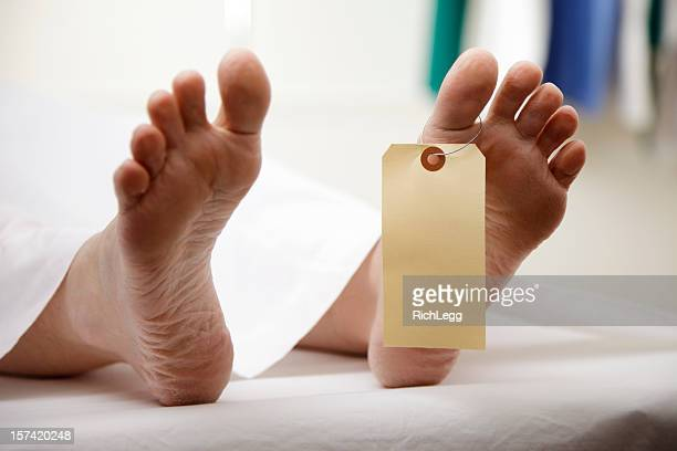 dead body - rich_legg stock pictures, royalty-free photos & images