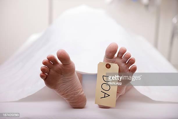 corpo morto - dead body - fotografias e filmes do acervo