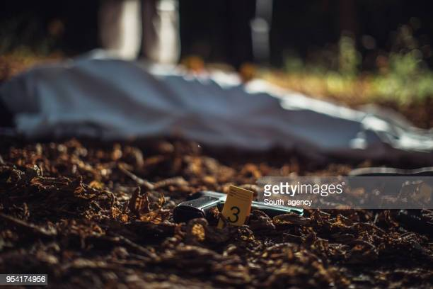 dead body - murder stock pictures, royalty-free photos & images