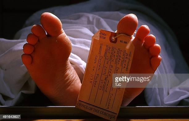 a dead female body with a toe tag - morgue woman stock pictures, royalty-free photos & images