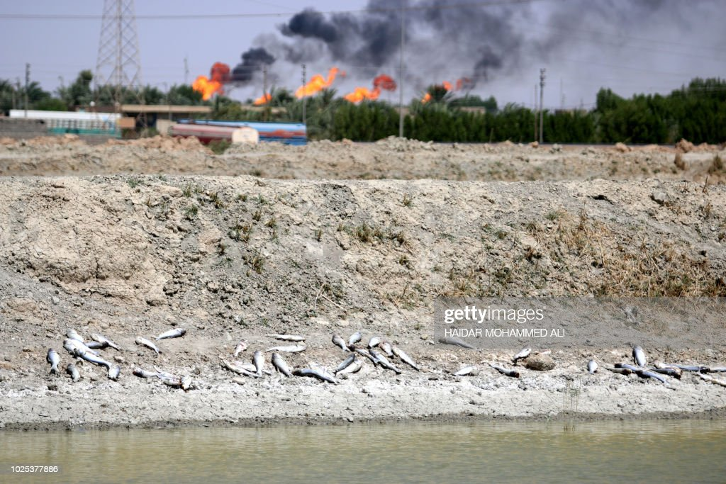 IRAQ-HEALTH-WATER-POLLUTION-ENVIRONMENT : News Photo