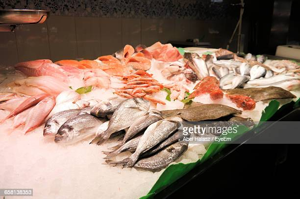 Dead Fishes On Ice At Market For Sale