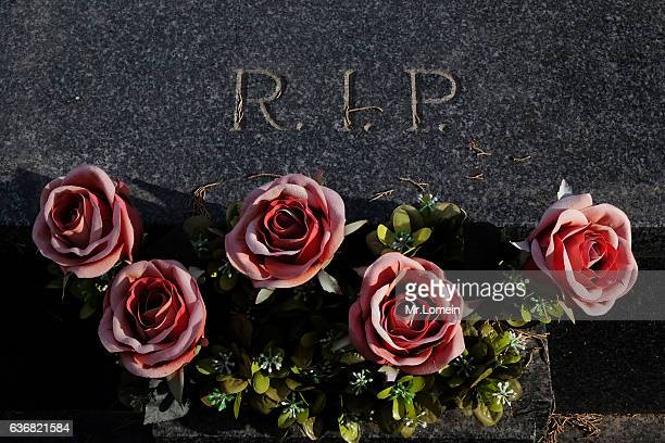 dead flowers - rest in peace stock pictures, royalty-free photos & images