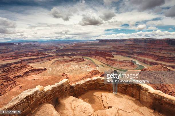 dead horse point state park - nico de pasquale photography stock pictures, royalty-free photos & images