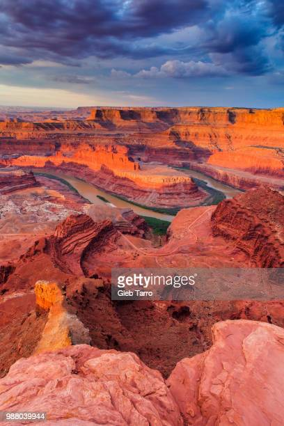 dead horse point state park, utah, usa - utah stock pictures, royalty-free photos & images