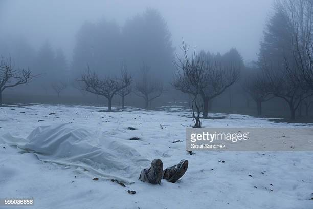 dead man in the snow - dead body stock pictures, royalty-free photos & images