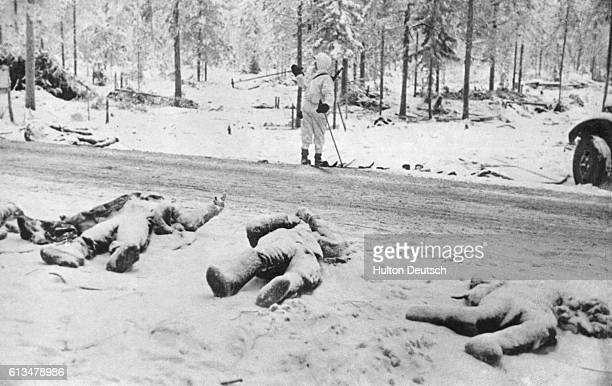 Dead Russian soldiers of the 44th division lie along the roadside after the battle of Suomussalmi in Finland during World War II