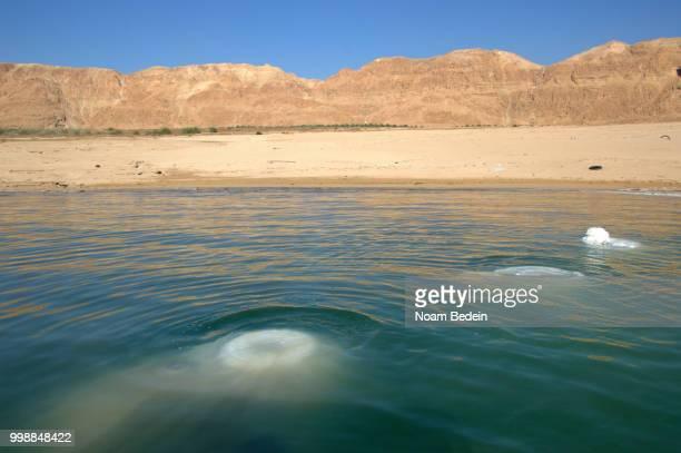 Dead Sea, 15/04/2016