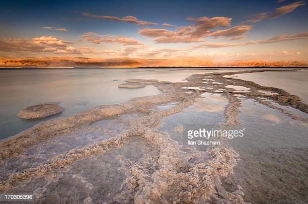 dead sea afternoon - mar muerto fotografías e imágenes de stock