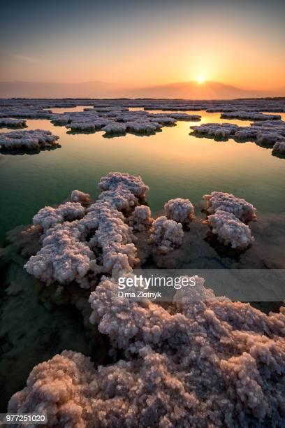 dead sea at sunrise, israel - mar muerto fotografías e imágenes de stock