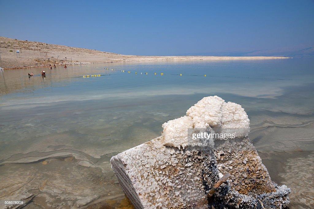 Dead Sea beach : Bildbanksbilder