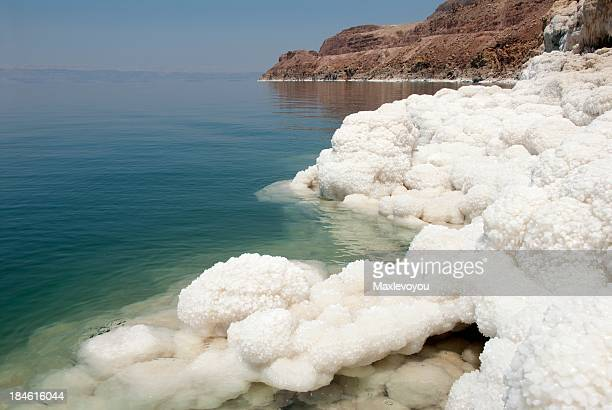 Dead Sea Beauty