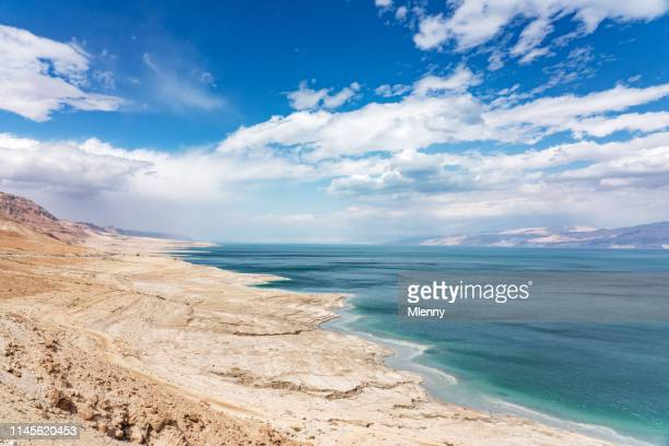 dead sea coast ein gedi israel - dead sea stock pictures, royalty-free photos & images