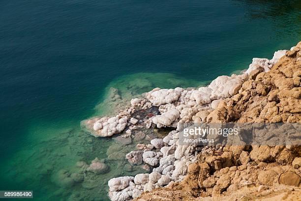 dead sea, jordan - 死海 ストックフォトと画像