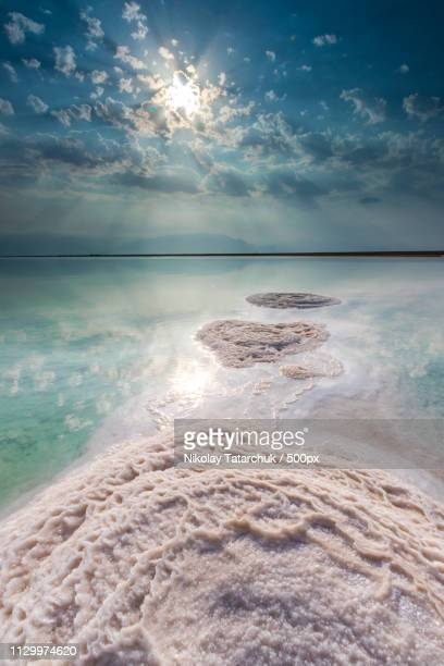 dead sea - dead sea stock pictures, royalty-free photos & images