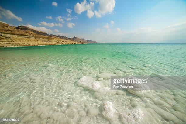 dead sea rocks - dead sea stock pictures, royalty-free photos & images