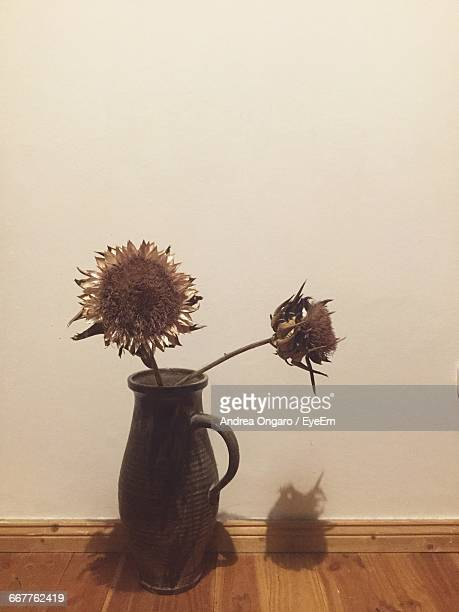 dead sunflower in vase - dead plant stock pictures, royalty-free photos & images