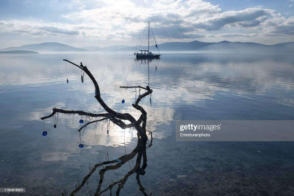 Dead tree and anchored boat at Ozbek village,Izmir. : Stock Photo