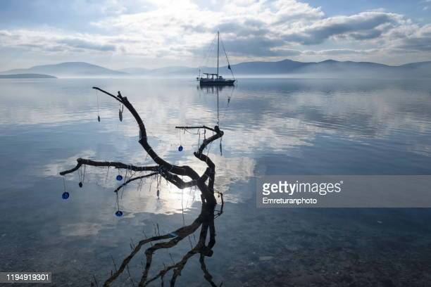 dead tree and anchored boat at ozbek village,izmir. - emreturanphoto stock pictures, royalty-free photos & images