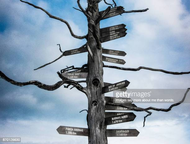 A dead tree serving as signage for various places in the world.Patagonia