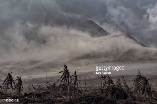 Dead trees near Taal Volcano's crater are seen covered in volcanic ash from the volcano's eruption on January 14 2020 in Taal Volcano Island Batangas...
